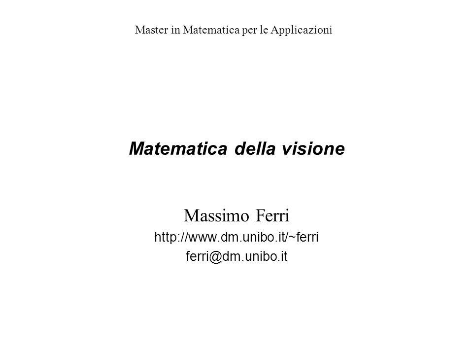 Matematica della visione