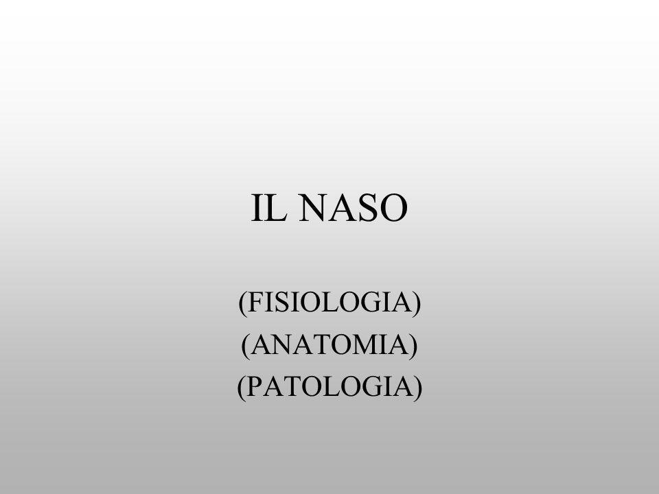 (FISIOLOGIA) (ANATOMIA) (PATOLOGIA)