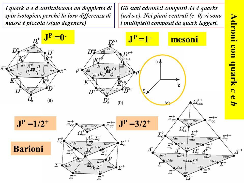 JP =0- JP =1- mesoni Adroni con quark c e b JP =1/2+ JP =3/2+ Barioni