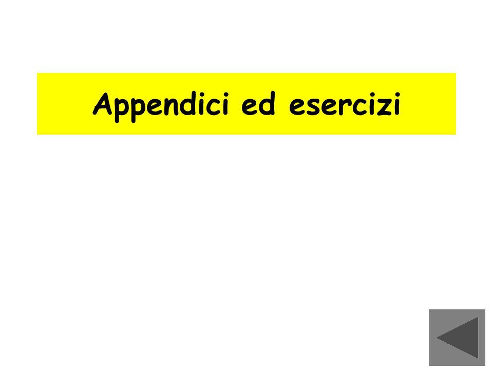 Appendici ed esercizi