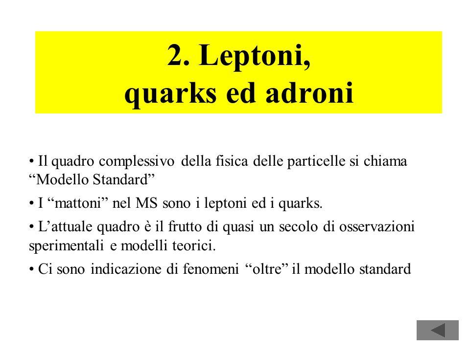2. Leptoni, quarks ed adroni