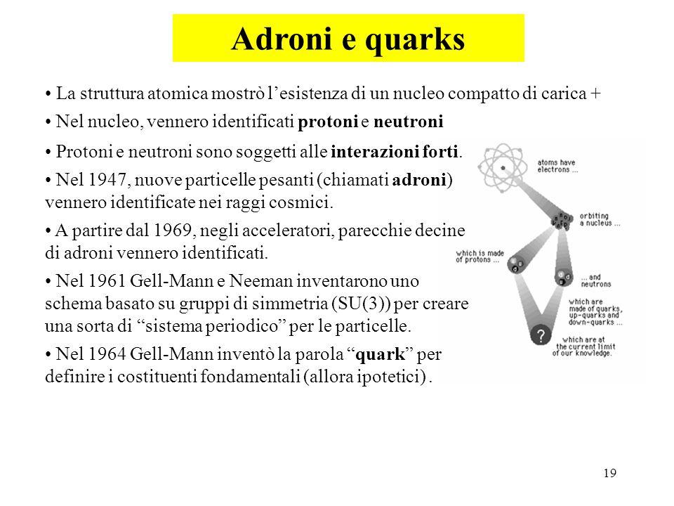 Adroni e quarks La struttura atomica mostrò l'esistenza di un nucleo compatto di carica + Nel nucleo, vennero identificati protoni e neutroni.