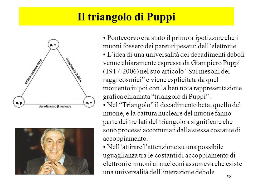 Il triangolo di Puppi Pontecorvo era stato il primo a ipotizzare che i muoni fossero dei parenti pesanti dell'elettrone.