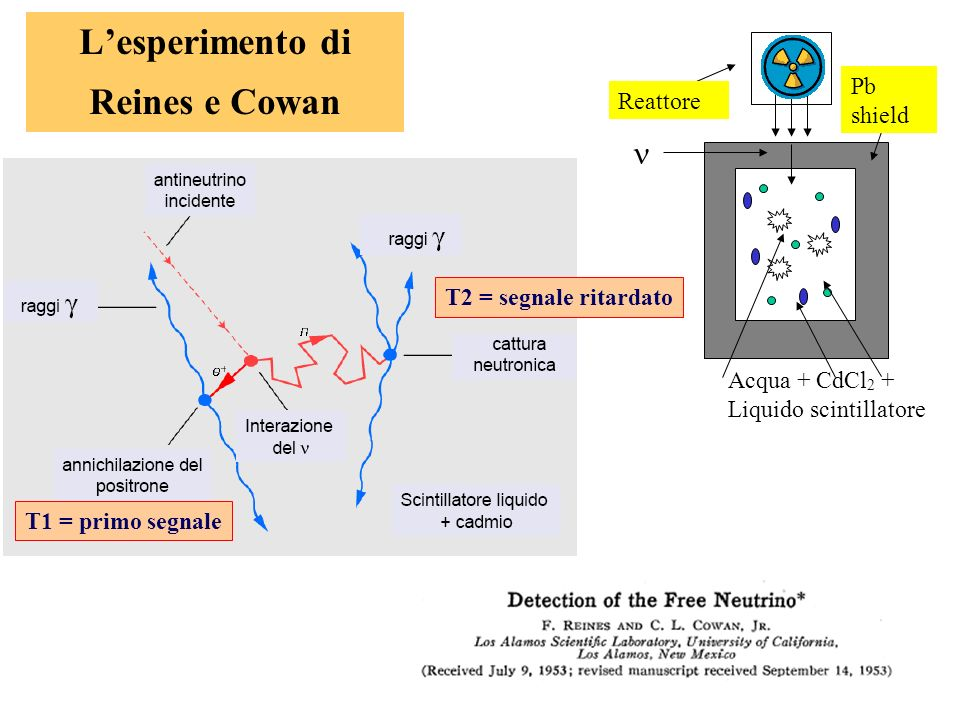 L'esperimento di Reines e Cowan