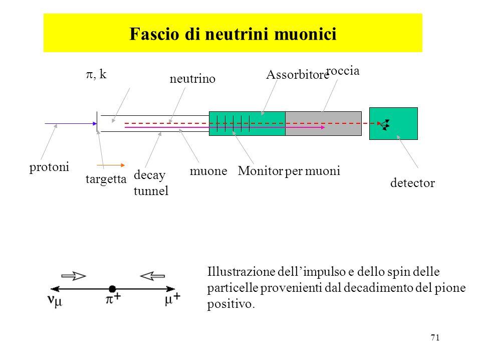 Fascio di neutrini muonici