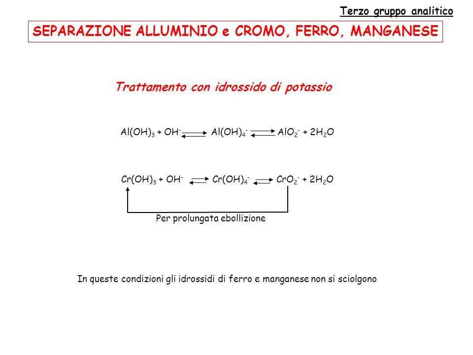 Terzo gruppo analitico Trattamento con idrossido di potassio