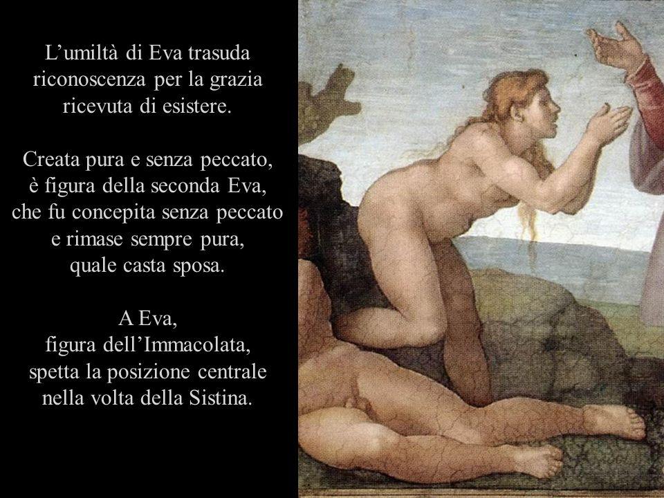 Creata pura e senza peccato, è figura della seconda Eva,