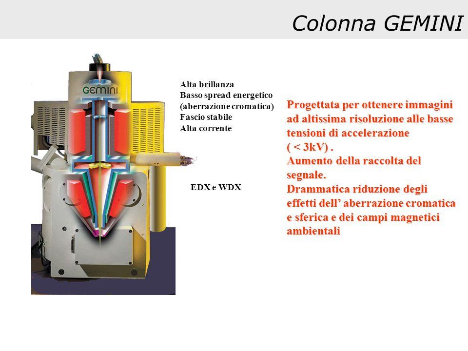 Colonna GEMINI Alta brillanza. Basso spread energetico. (aberrazione cromatica) Fascio stabile. Alta corrente.