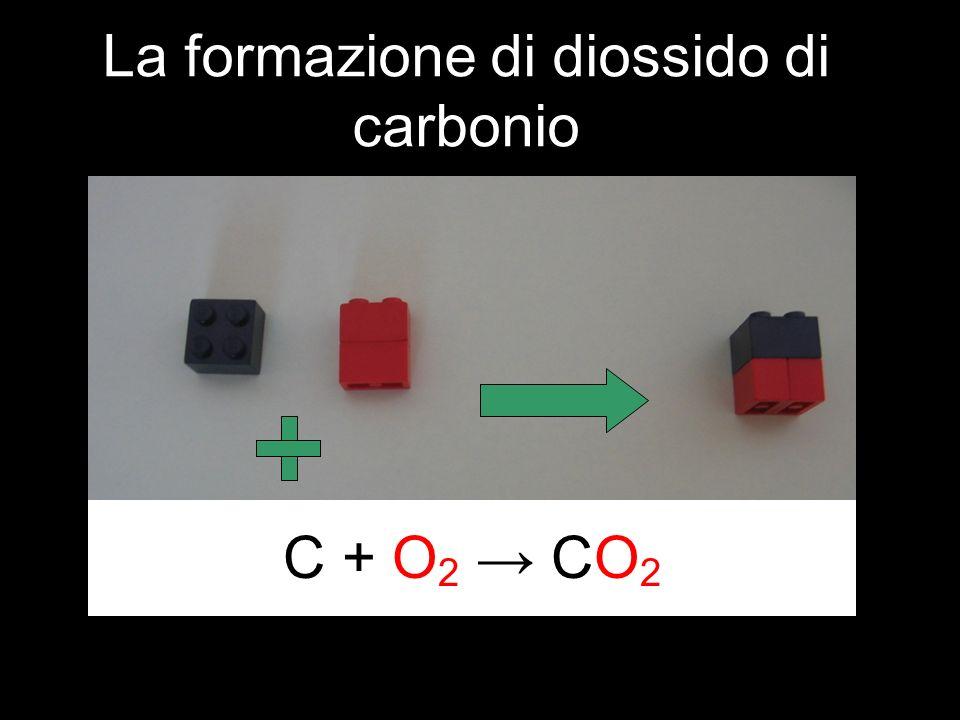 La formazione di diossido di carbonio