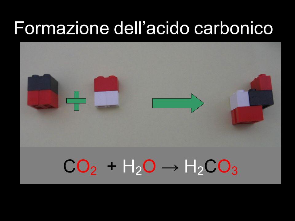 Formazione dell'acido carbonico