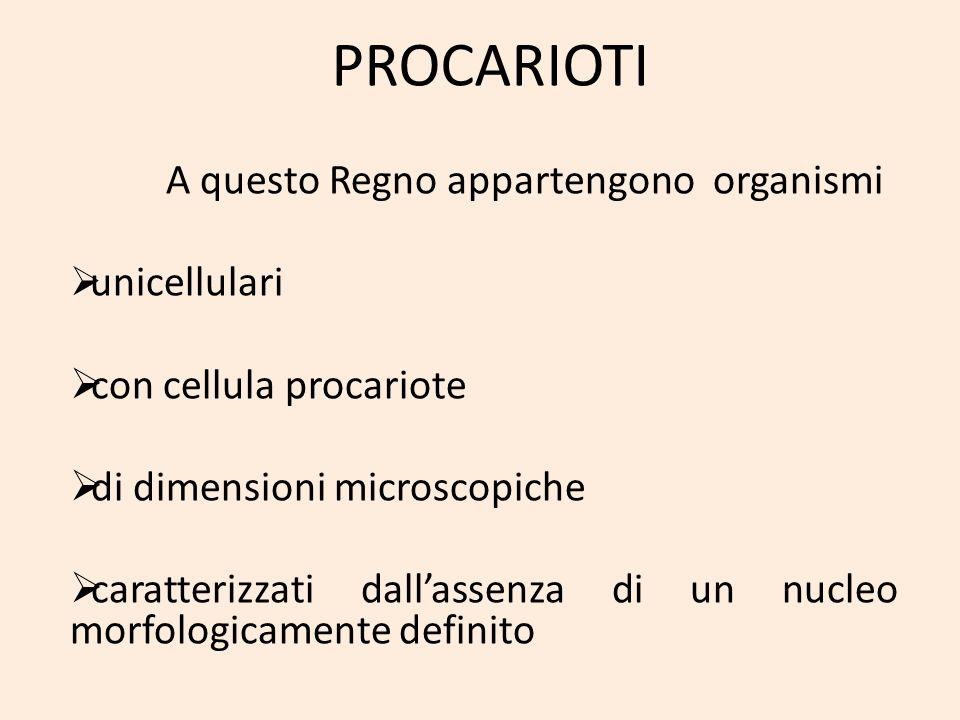 PROCARIOTI unicellulari con cellula procariote