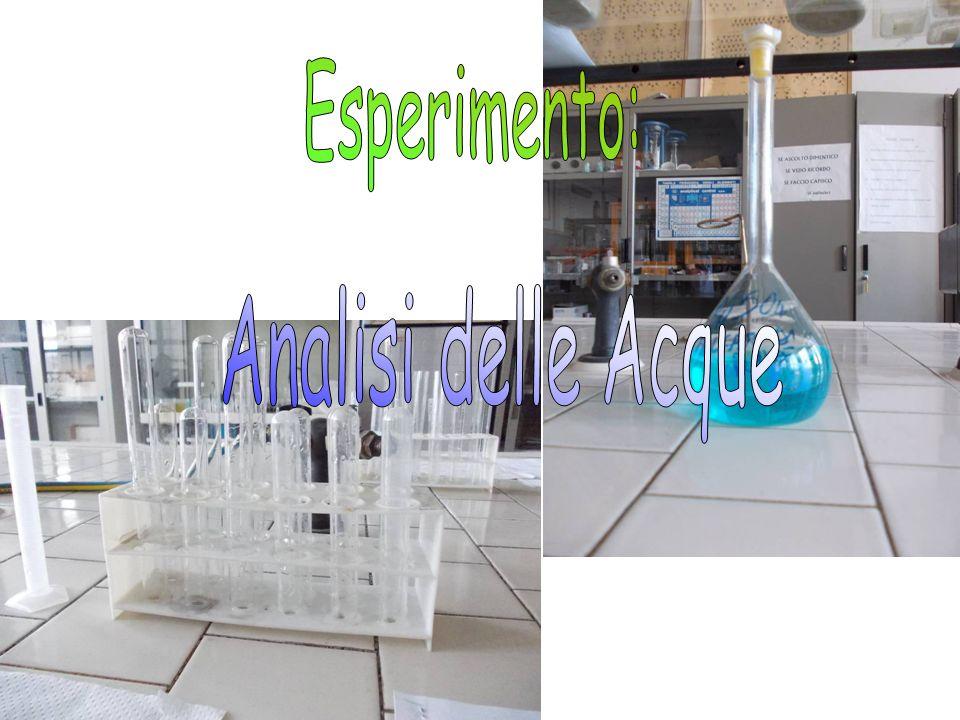 Esperimento: Analisi delle Acque