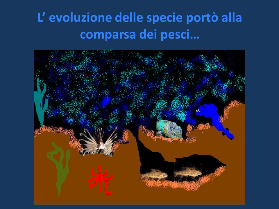 L' evoluzione delle specie portò alla comparsa dei pesci…