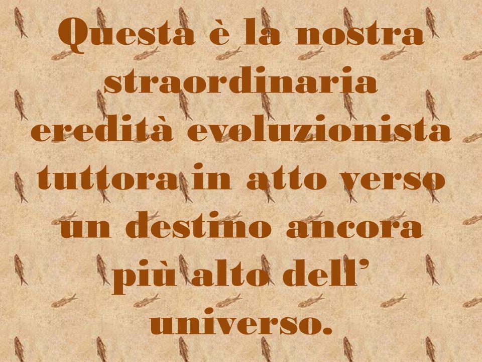 Questa è la nostra straordinaria eredità evoluzionista tuttora in atto verso un destino ancora più alto dell' universo.