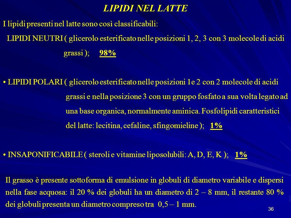 LIPIDI NEL LATTE I lipidi presenti nel latte sono così classificabili: