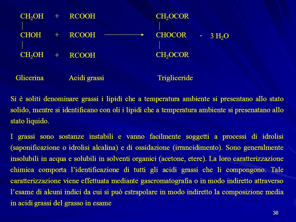 CH2OH CHOH. + RCOOH. CH2OCOR. CHOCOR. - 3 H2O. Glicerina. Acidi grassi. Trigliceride.