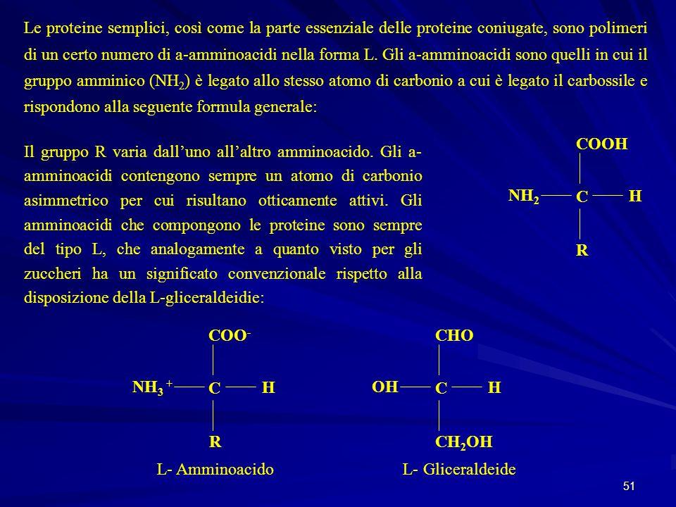 Le proteine semplici, così come la parte essenziale delle proteine coniugate, sono polimeri di un certo numero di a-amminoacidi nella forma L. Gli a-amminoacidi sono quelli in cui il gruppo amminico (NH2) è legato allo stesso atomo di carbonio a cui è legato il carbossile e rispondono alla seguente formula generale: