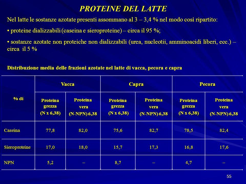 PROTEINE DEL LATTE Nel latte le sostanze azotate presenti assommano al 3 – 3,4 % nel modo così ripartito: