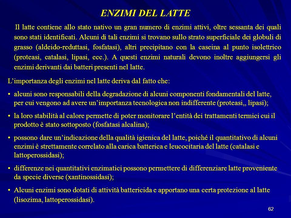 ENZIMI DEL LATTE