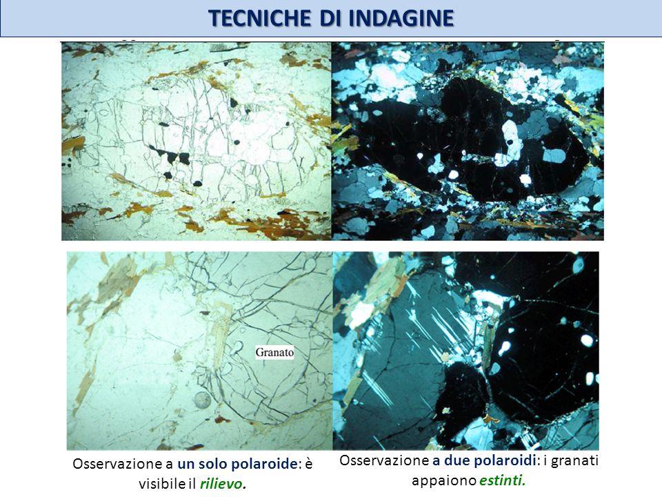 TECNICHE DI INDAGINE Osservazione a un solo polaroide: è visibile il rilievo.