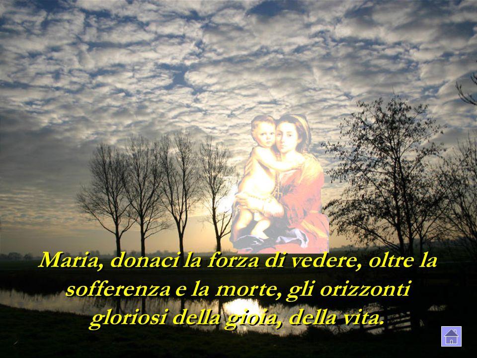 Maria, donaci la forza di vedere, oltre la sofferenza e la morte, gli orizzonti gloriosi della gioia, della vita.