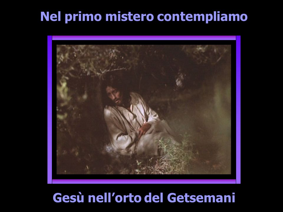 Nel primo mistero contempliamo Gesù nell'orto del Getsemani