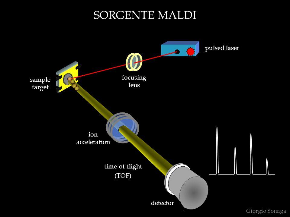 SORGENTE MALDI pulsed laser focusing lens sample target