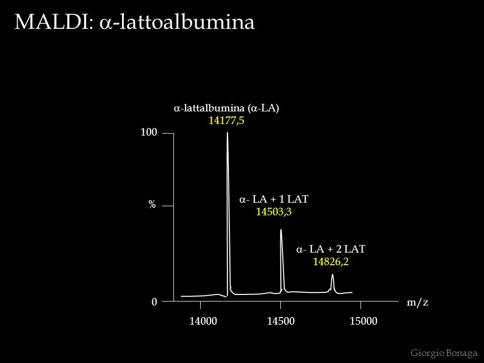 a-lattalbumina (a-LA)