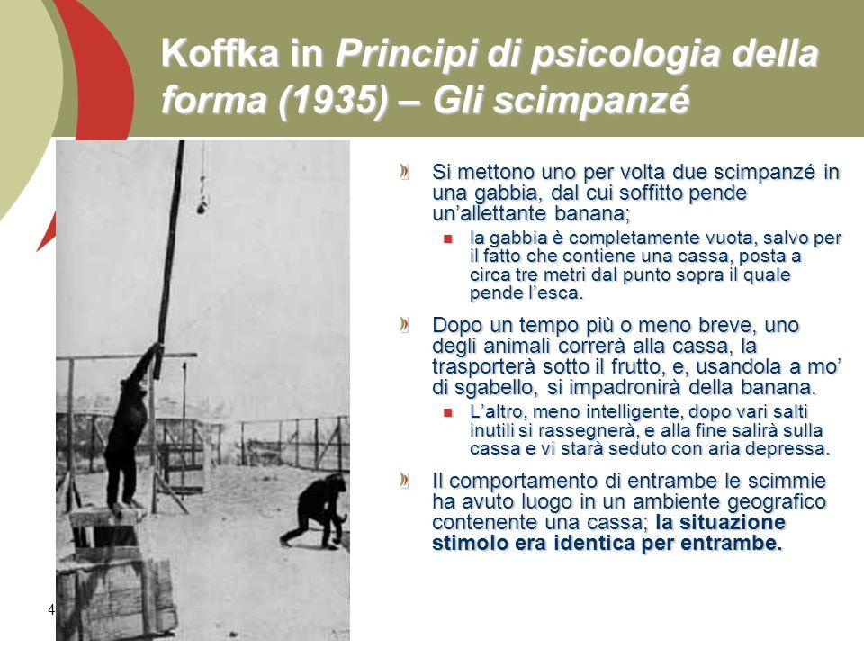 Koffka in Principi di psicologia della forma (1935) – Gli scimpanzé