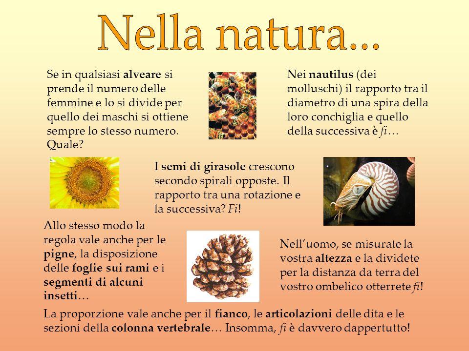 Nella natura...
