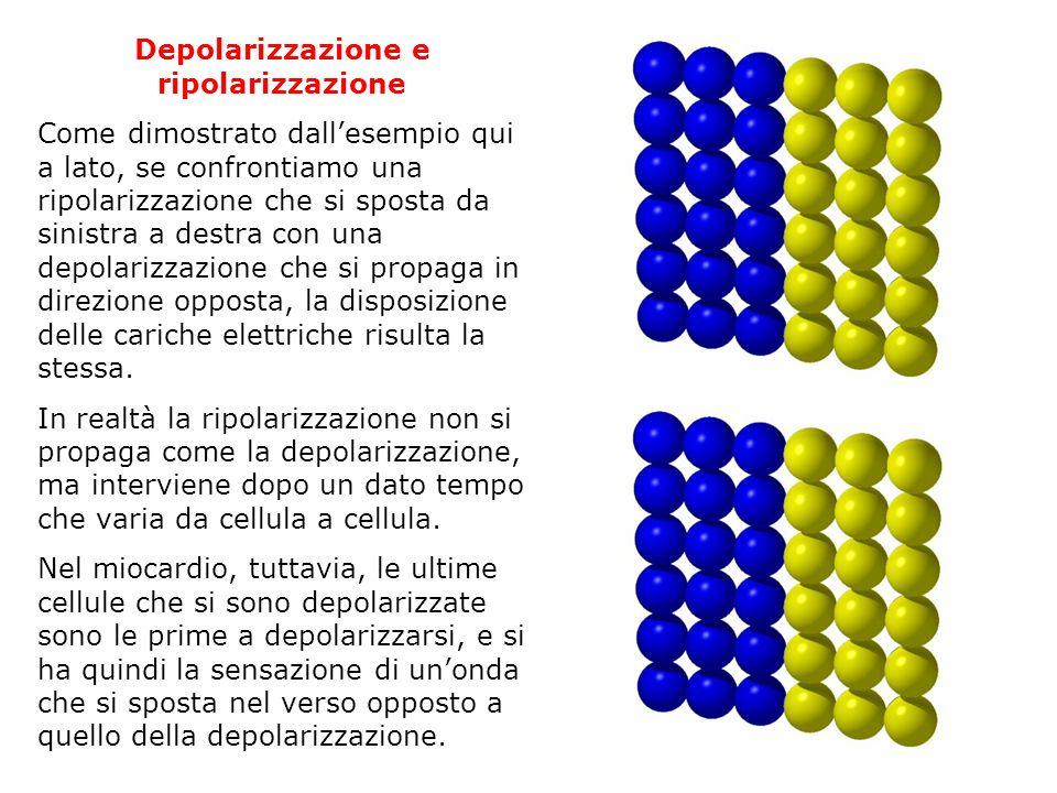 Depolarizzazione e ripolarizzazione