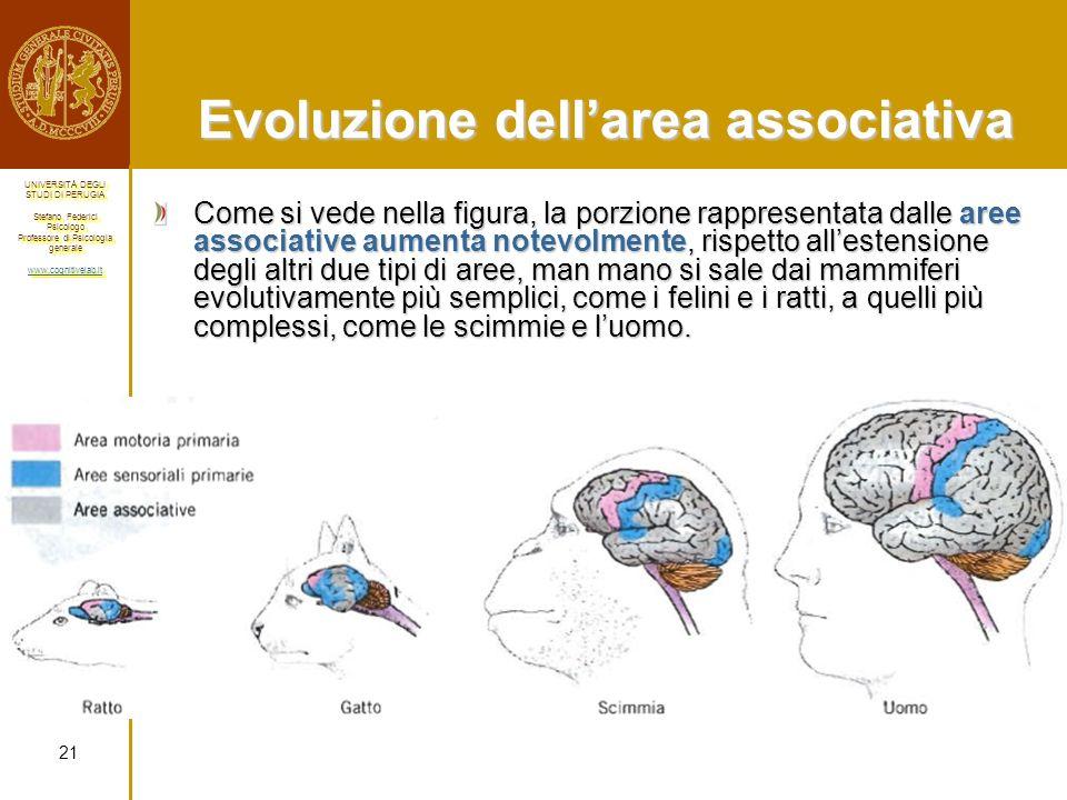 Evoluzione dell'area associativa