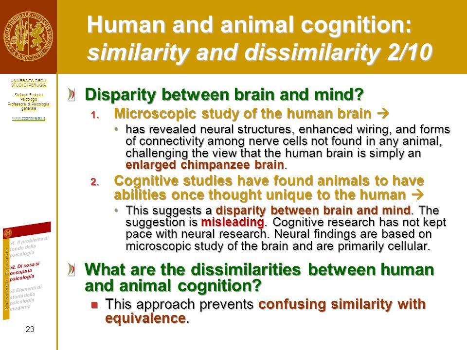 Human and animal cognition: similarity and dissimilarity 2/10
