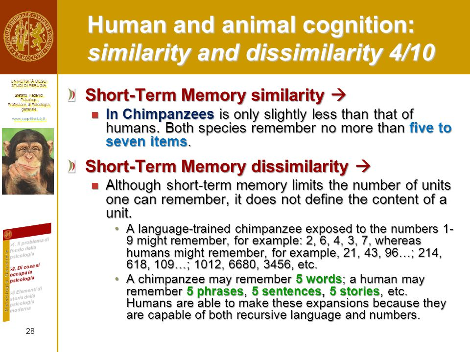 Human and animal cognition: similarity and dissimilarity 4/10
