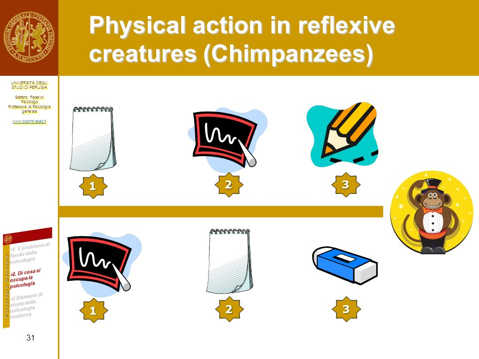 Physical action in reflexive creatures (Chimpanzees)