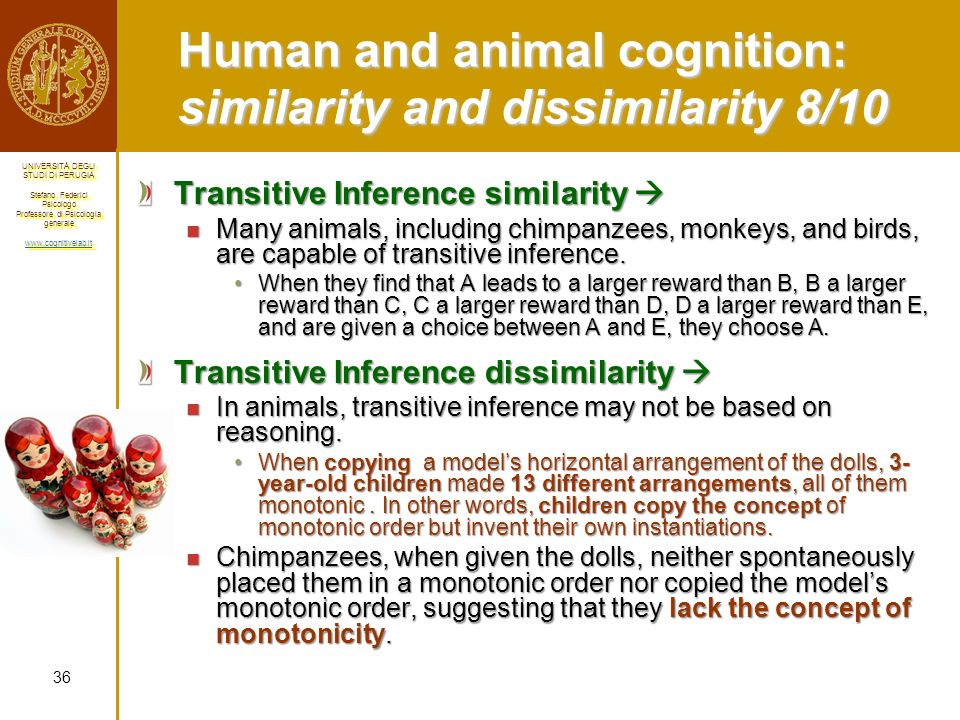 Human and animal cognition: similarity and dissimilarity 8/10