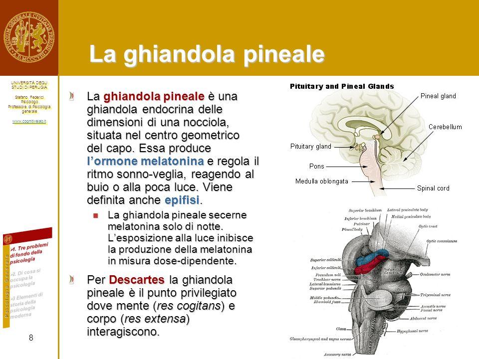 La ghiandola pineale