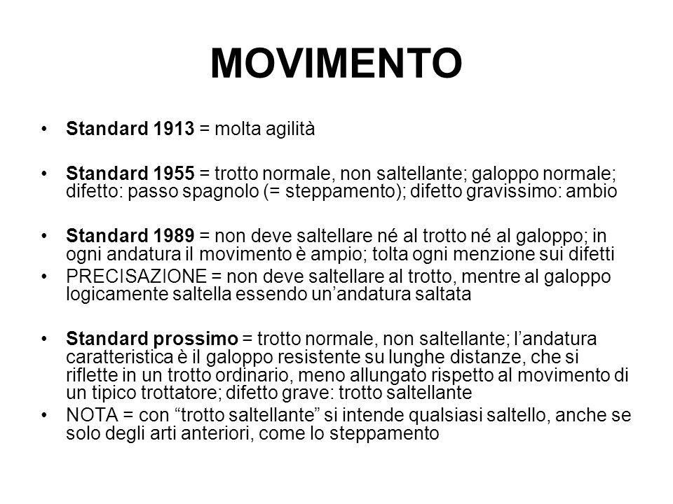 MOVIMENTO Standard 1913 = molta agilità