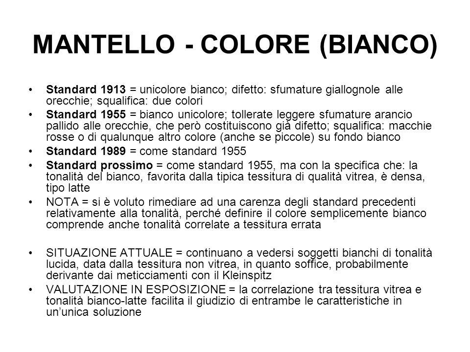 MANTELLO - COLORE (BIANCO)