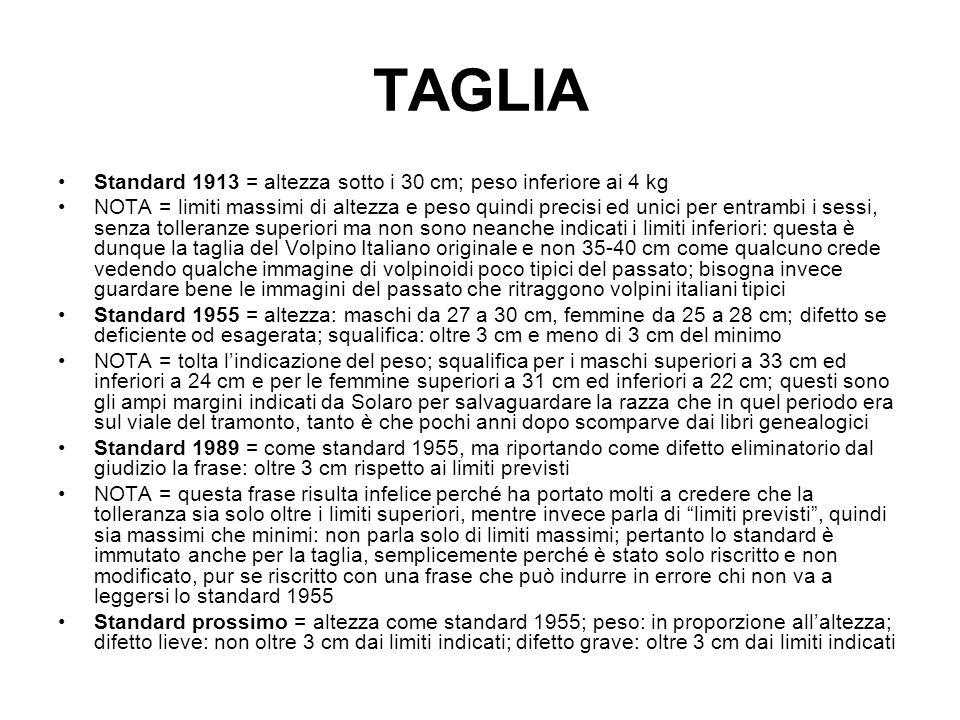TAGLIA Standard 1913 = altezza sotto i 30 cm; peso inferiore ai 4 kg