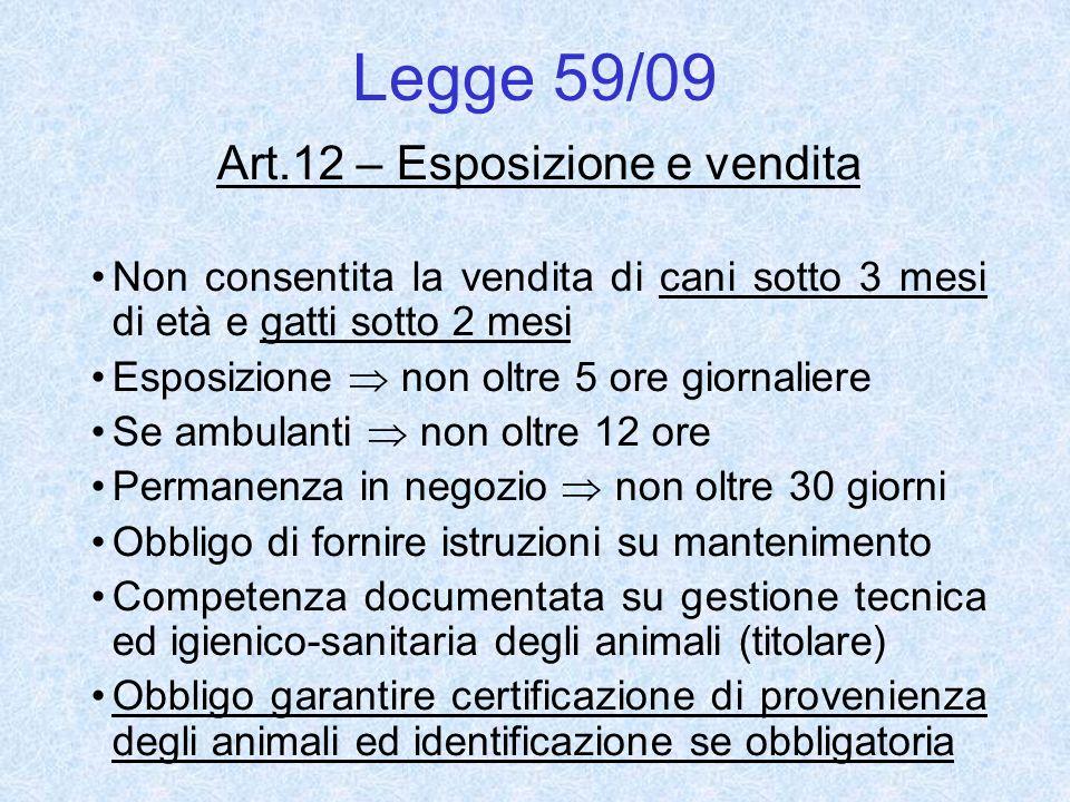 Art.12 – Esposizione e vendita