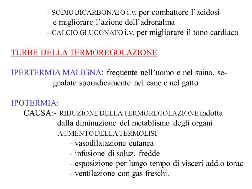 - SODIO BICARBONATO i.v. per combattere l'acidosi