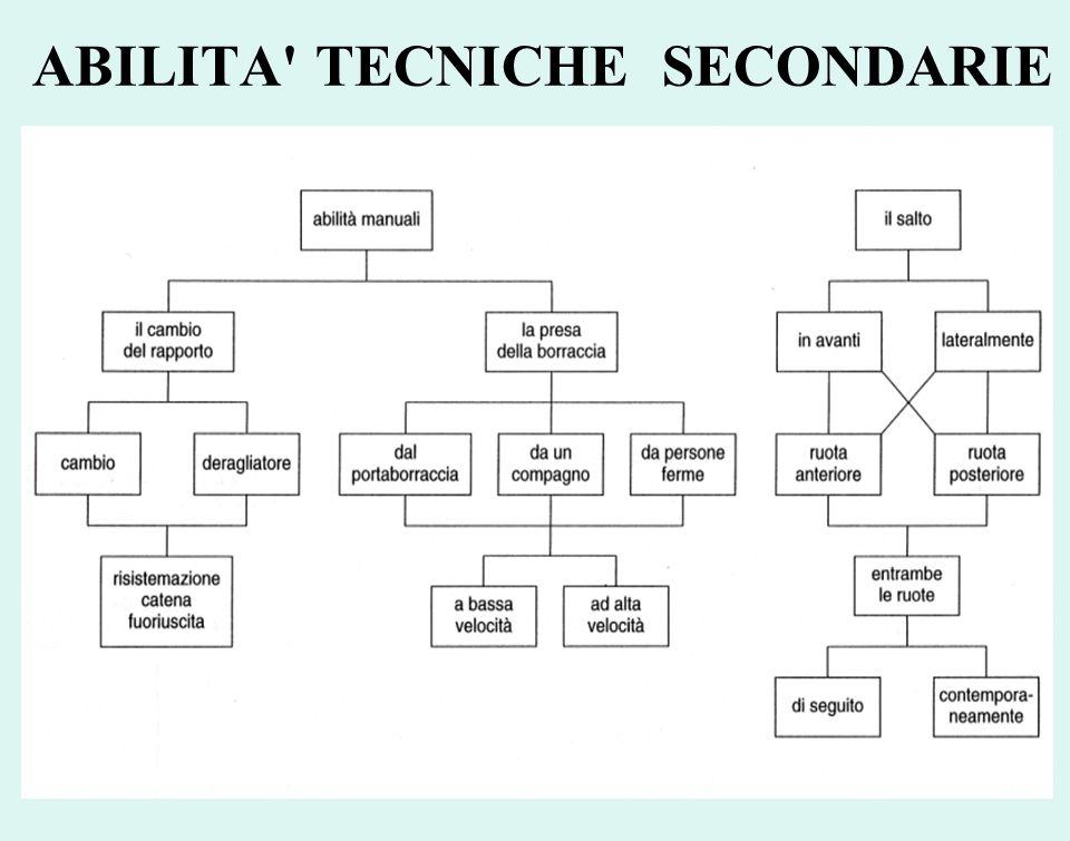 ABILITA TECNICHE SECONDARIE