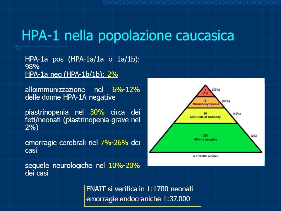 HPA-1 nella popolazione caucasica