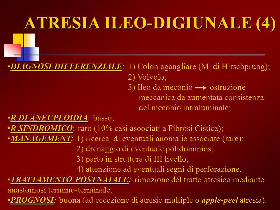 ATRESIA ILEO-DIGIUNALE (4)