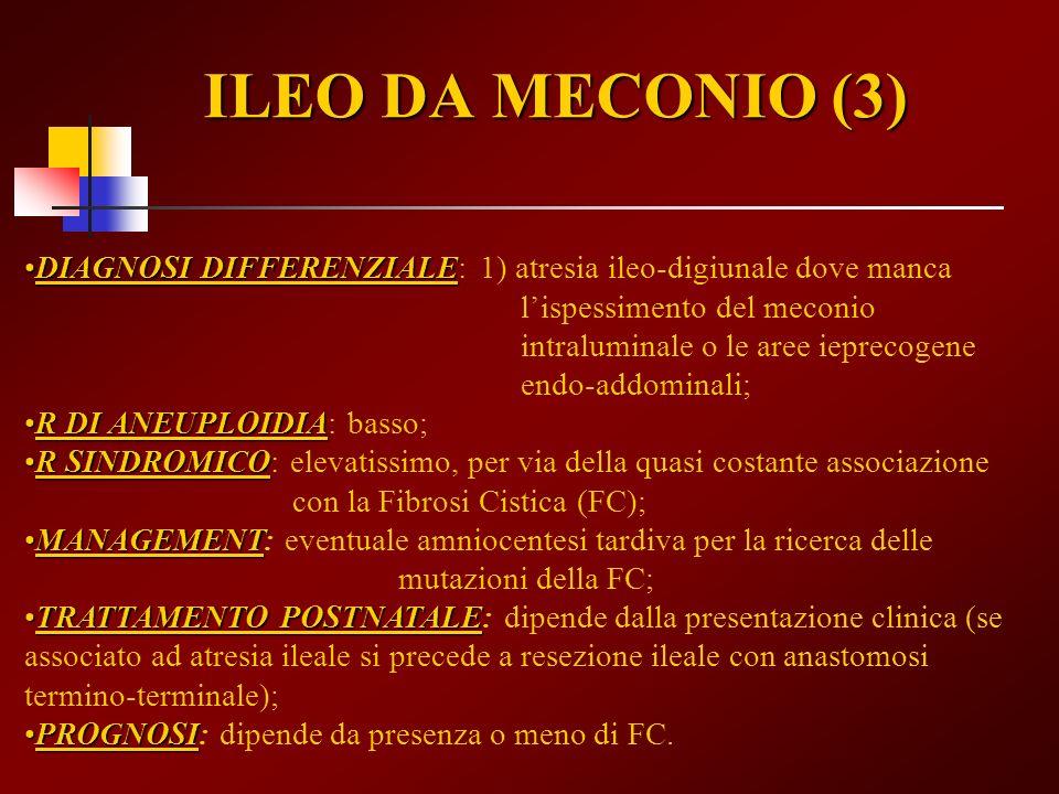 ILEO DA MECONIO (3)