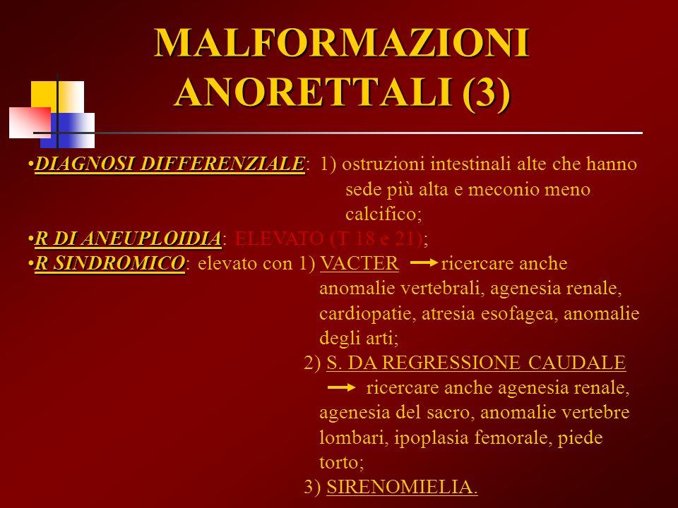 MALFORMAZIONI ANORETTALI (3)