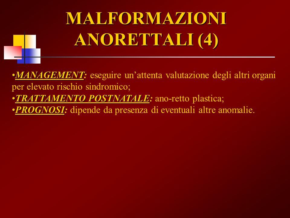 MALFORMAZIONI ANORETTALI (4)