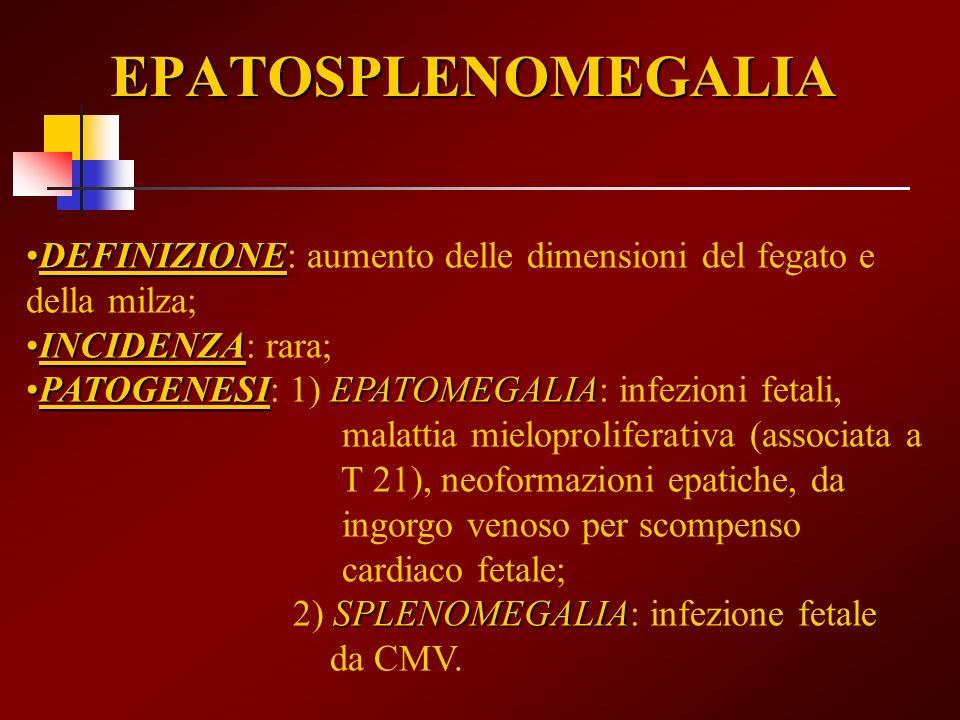 EPATOSPLENOMEGALIA DEFINIZIONE: aumento delle dimensioni del fegato e della milza; INCIDENZA: rara;