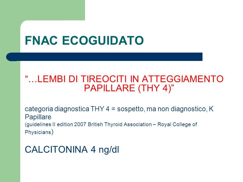 …LEMBI DI TIREOCITI IN ATTEGGIAMENTO PAPILLARE (THY 4)
